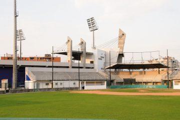Il lato del campo da softball