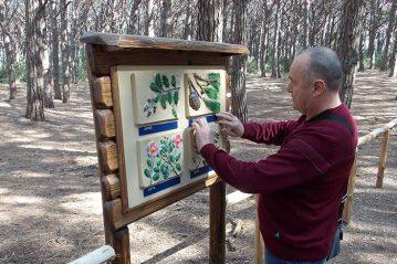 Esplorazione aptica di un pannello che riproduce la flora