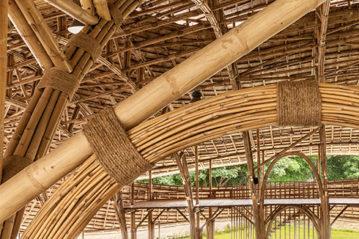 bambu-interni2