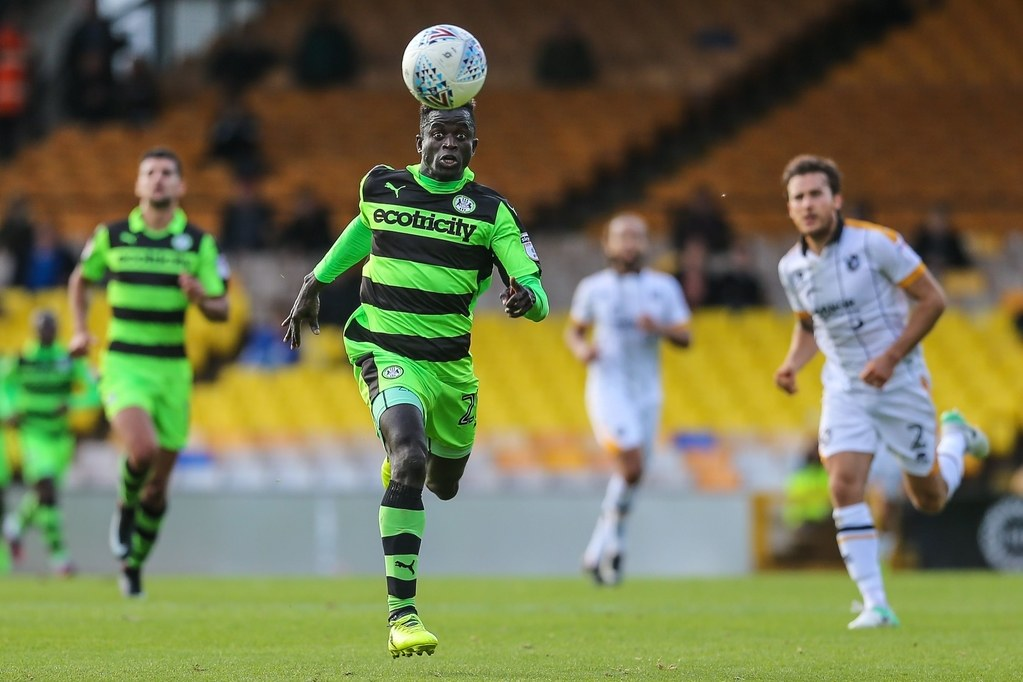 Forest green1