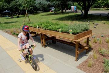 Il percorso per disabili motori e l'orto aromatico
