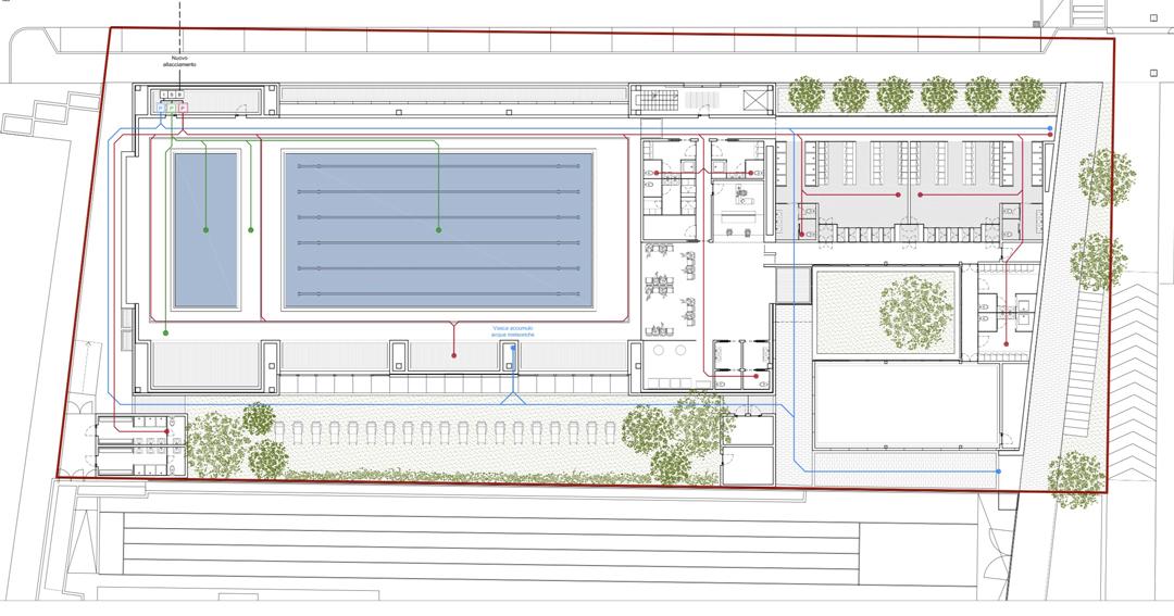 Pianta del centro natatorio in progetto
