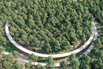 Cycling through the trees (ph. Visit Limburg)
