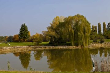 golf montecchia (4)