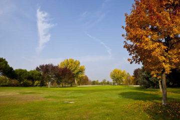 golf montecchia-copertina