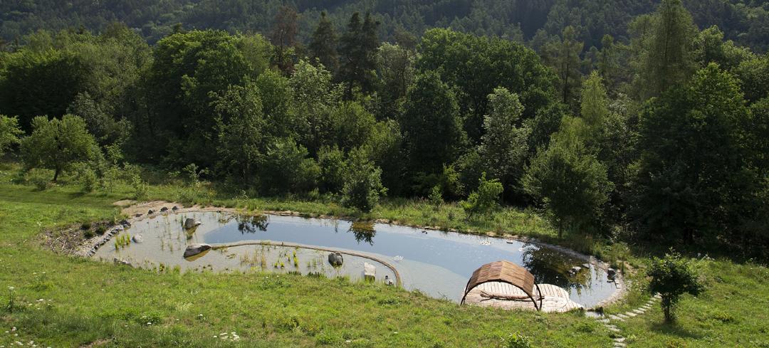 Biolago in un contesto naturalistico (ph. josefcubes/Shutterstock)